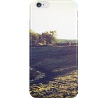 Ponies and Ruins iPhone Case/Skin