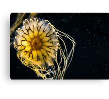 Otherworldly Jelly Canvas Print