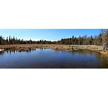 Stony Swamp Panoramic View Photographic Print