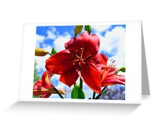 Red Tiger Lily Greeting Card