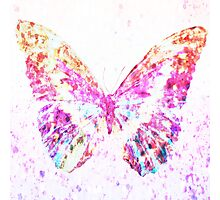 Beautiful dry painted pink butterfly Photographic Print