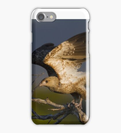 Sunset Kite iPhone Case/Skin