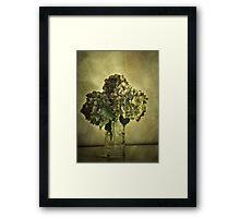 Everlasting Framed Print