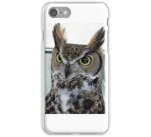 owl bird of prey iPhone Case/Skin