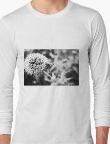 plant airfield Long Sleeve T-Shirt