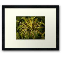Sunflower II: Pucker Up! Framed Print