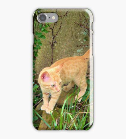 The Foundling Kitten iPhone Case/Skin
