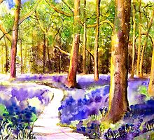 Bluebell Wood by A Portrait  of Europe