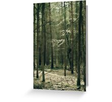 Classic Antique Trees Number 4 Greeting Card
