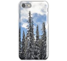 Snow, Sun and Sky iPhone Case/Skin