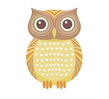 One Friendly Owl Photographic Print