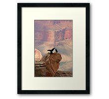 Grand Canyon Ravens Framed Print