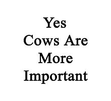 Yes Cows Are More Important  Photographic Print