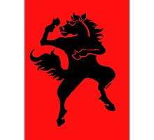 Cool dancing horse Photographic Print