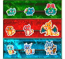 POKEMON GO - STARTERS (Bulbasaur, charmander, squirtle) Photographic Print