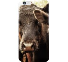 Legendary Cattle iPhone Case/Skin
