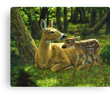 First Spring - Whitetail Deer Painting Canvas Print