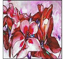 Floral Abstract by Nina Rogers Photographic Print