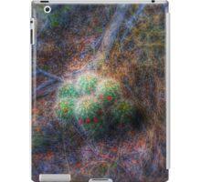 Sandia Mountain cactus hdr iPad Case/Skin