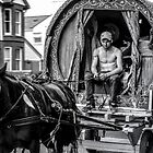 Traveller 1 bw by wallarooimages