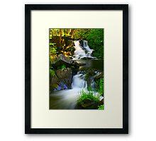 Ogemaw Falls Framed Print