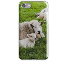 Ewe and Lamb iPhone Case/Skin