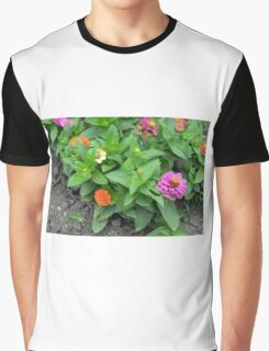 Colorful pink and orange flowers in green leaves bush in the garden. Graphic T-Shirt
