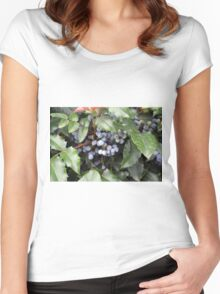 Small grapes hidden under green leaves. Women's Fitted Scoop T-Shirt
