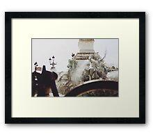 Aqua Equine Framed Print