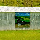 Barn - Wild Turkey Mural by mcstory