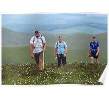 Darn Cotton Grass & Moorland Bog Poster