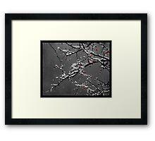 Memory of Seasons Past Framed Print