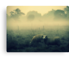Dreaming of Sheep - JUSTART © Canvas Print