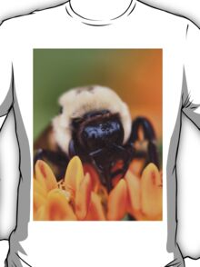 Fuzzy Bee T-Shirt