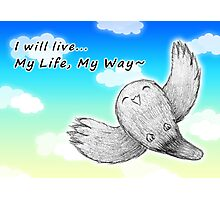 I will live My Life, My Way~ Photographic Print