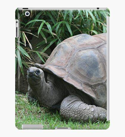 Tortoise 2 iPad Case/Skin