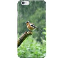 Chaffinch in the Rain iPhone Case/Skin