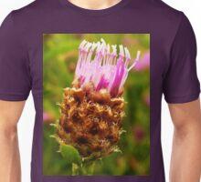 Common knapweed Unisex T-Shirt