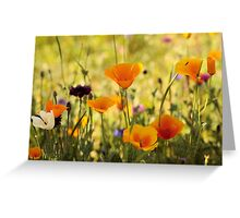 Summer Garden - JUSTART ©  Greeting Card