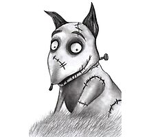 Sparky from Frankenweenie Photographic Print