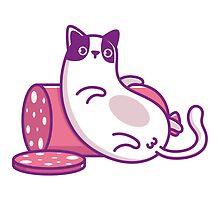 Fat Cat by moryachok