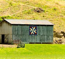 Kentucky Barn Quilt - Americana Star by mcstory