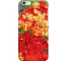 Riot of Color iPhone Case/Skin