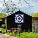 Kentucky Barn Quilt - Carpenters Wheel by mcstory