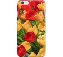 Two Colors of Pretty iPhone Case/Skin