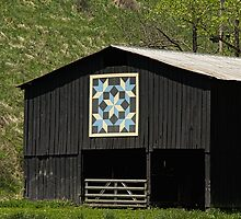 Kentucky Barn Quilt - Snow Crystals by mcstory