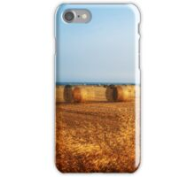 Eye test Hayballs iPhone Case/Skin