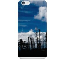 .acid Mountain iPhone Case/Skin