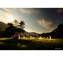 Night meadow Photographic Print