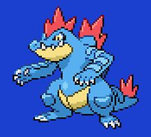 Feraligatr by GreenTheRival